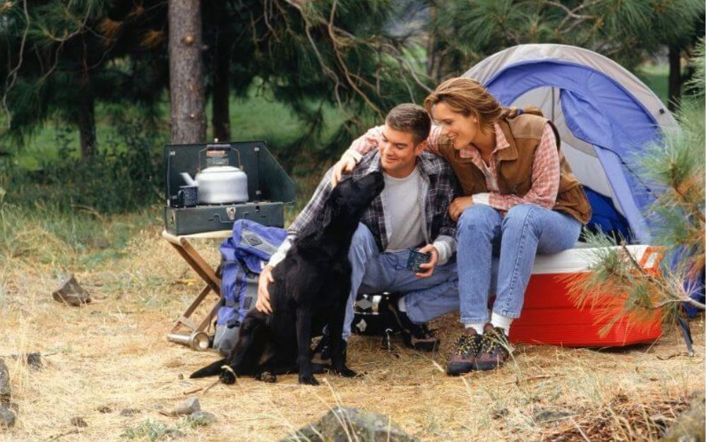 Tips on Making Your Camping Trip Fun with Your Dog!