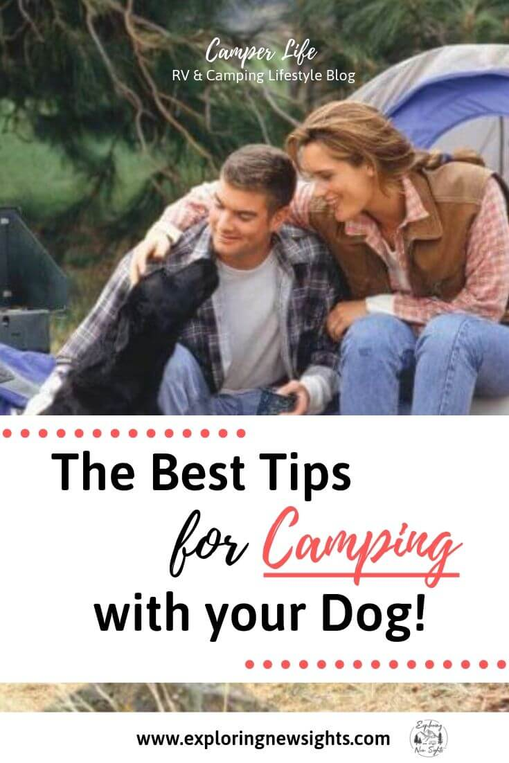 Tips on Camping with your Dog 1 - Tips on Making Your Camping Trip Fun with Your Dog!
