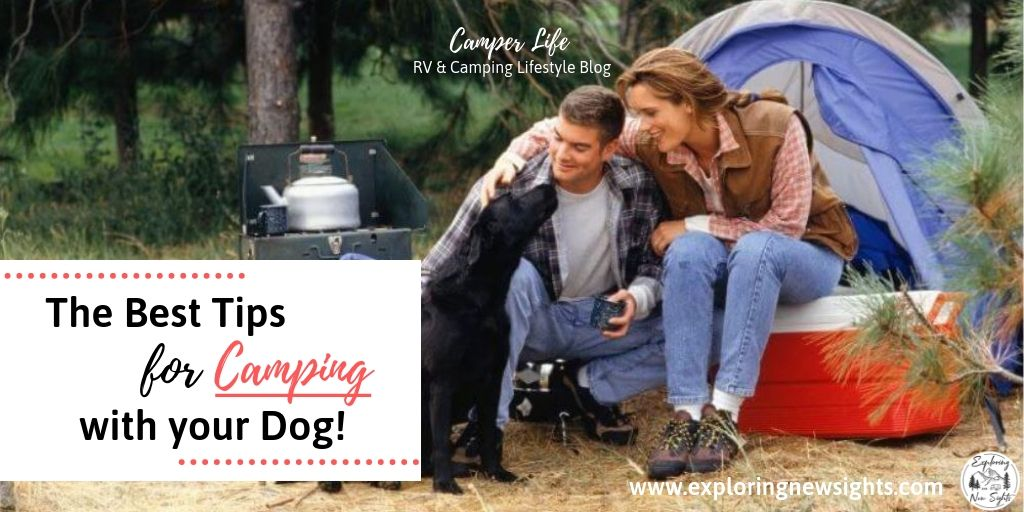 campingwithdogtipstwitter - Tips on Making Your Camping Trip Fun with Your Dog!