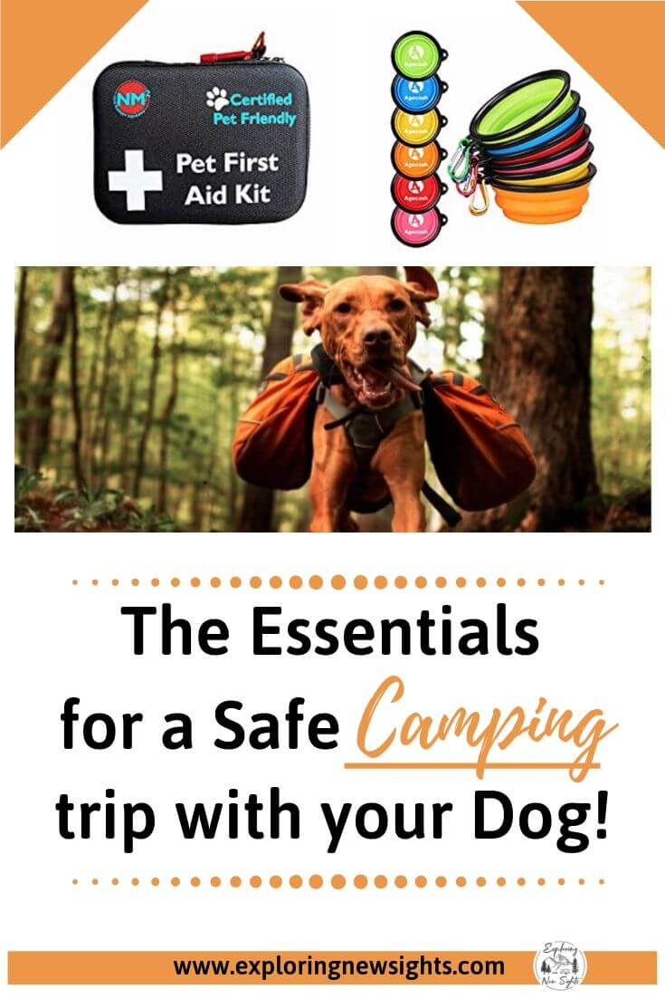 Tips on Camping with your Dog 2 - The Essentials for a Safe Camping Trip with your Dog(s)