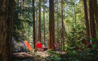 Family Camping | Tips for Planning the Perfect Trip